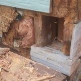 sinding contractors portland oregon